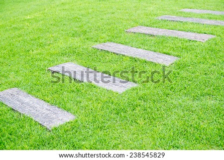 Stone path on the green grass. - stock photo