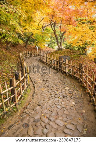 Stone path road in autumn vivid colors. - stock photo