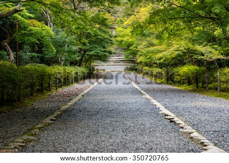 Stone path through a dense Japanese forest in Kyoto in early Autumn, with some leaves starting to turn yellow. - stock photo
