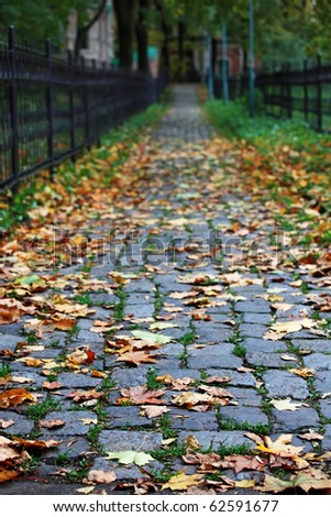 Stone path with fallen leaves through the old park in autumn. Shallow DOF. - stock photo