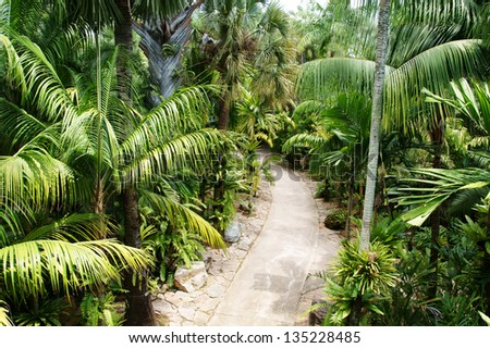 Stone pathway in tropical garden during day time - stock photo