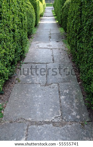 Stone Paved Garden Path and Topiary Hedgerow - stock photo