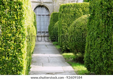 Stone Paved Garden Path with Bay Tree Topiary Landscaping - stock photo