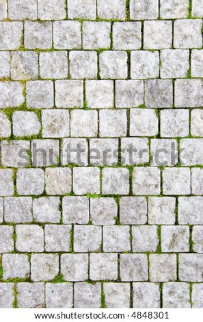 Stone pavement with green grass. Texture or background. - stock photo