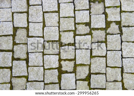 Stone pavement with sprouting moss texture - stock photo