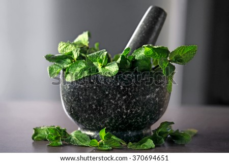 Stone pestle and mortar with mint leaves