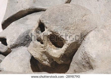 Stone skull - stock photo
