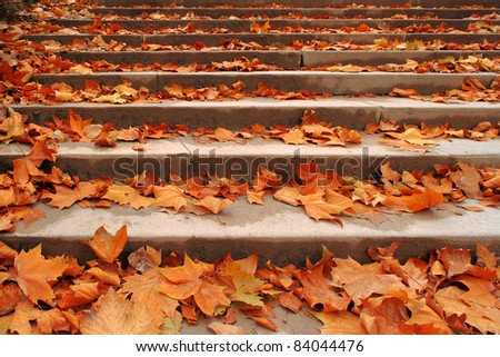 Stone stair path through fall colored trees. Paris. Montmartre. - stock photo