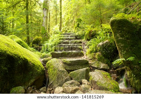 Stone staircase leading up a walkway through the Black Forest, Germany - stock photo