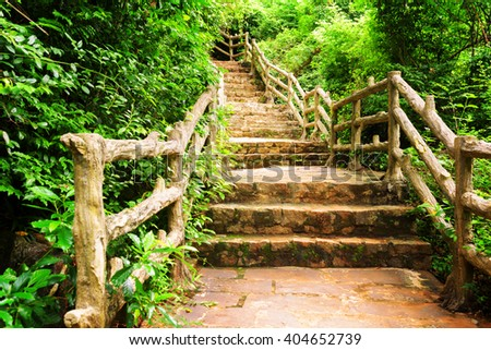 Stone stairs among green foliage leading across scenic tropical woods. Way through forest in summer season. - stock photo