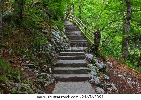 Stone stairs in green  forest.  Steps to waterfall Savica, Slovenia   - stock photo