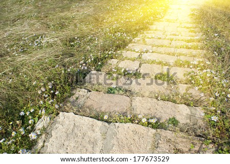 stone steps through the grass in the warm sunshine - stock photo