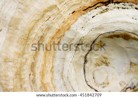 stone texture background,select focus with shallow depth of field:ideal use for background. - stock photo