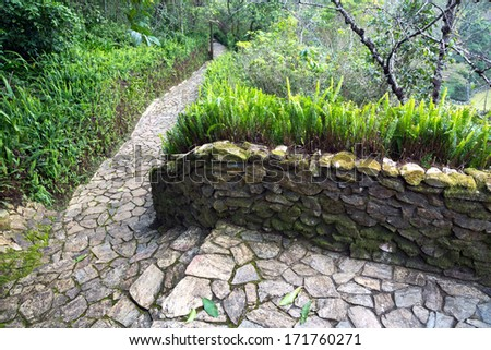 Stone walkway in the park.