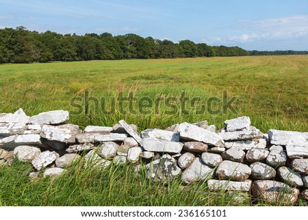 Stone wall in the field with forest on the horizon - stock photo