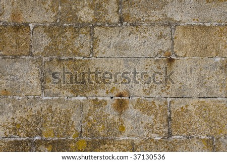 Stone wall texture clouse up