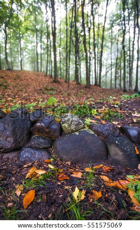 Stone wall with autumn leaves in northern Michigan