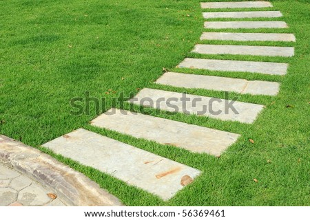 stone way in green grass.