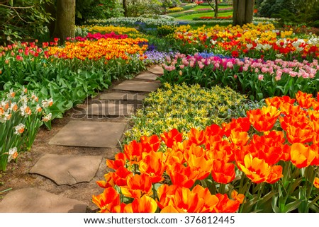 Stone way winding in spring flower garden with blossoming flowers - stock photo