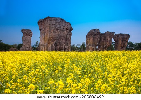 Stonehenge of Thailand in the middle of Mustard field with the blue sky - stock photo