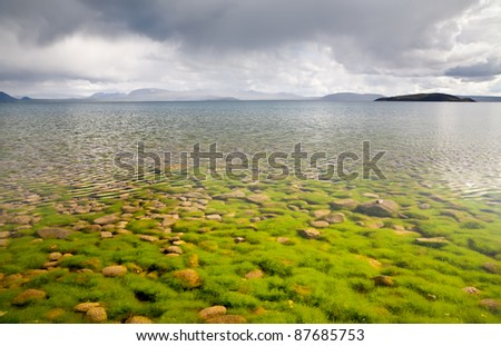 Stones and algae at bottom seen through the clear water of lake in Thingvellir national park, Iceland - stock photo