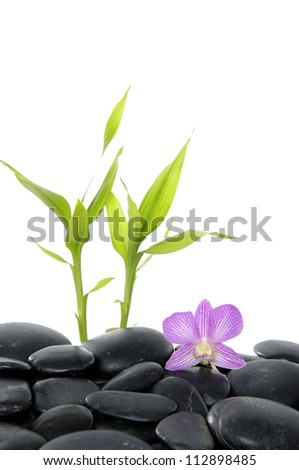 stones and bamboo with pink orchid