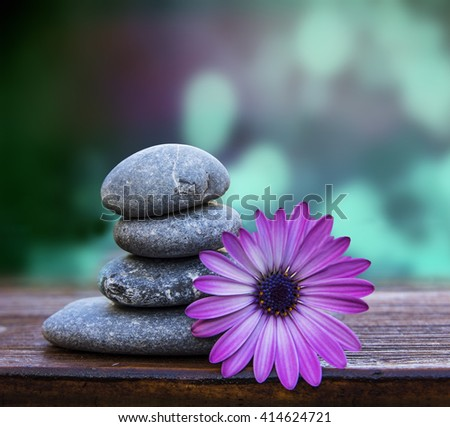 stones and flower - stock photo
