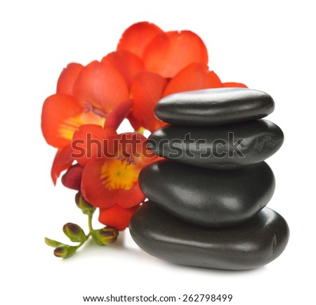 Stones and flower on a white background - stock photo