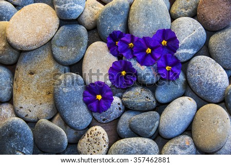 stones and flowers - stock photo