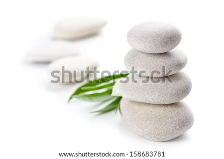 stones and green leaves isolated on white background - stock photo
