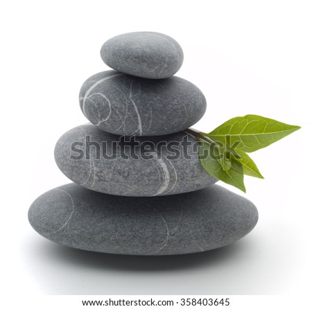 stones and leaves - stock photo