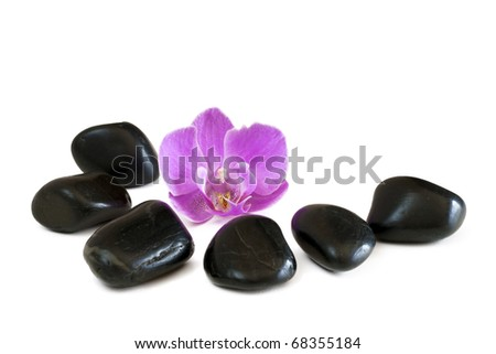 Stones and orchid isolated on a white background.