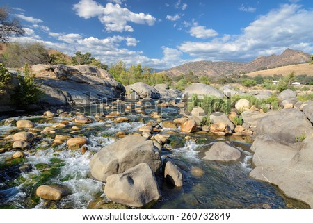 Stones and plants in an environment of the rapid river - stock photo