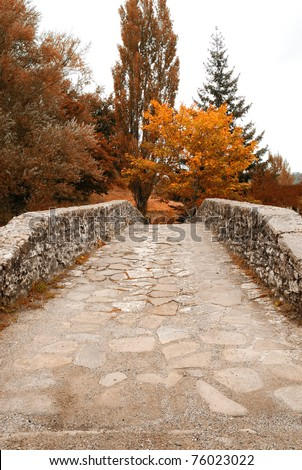 stones bridge over the river in autumn