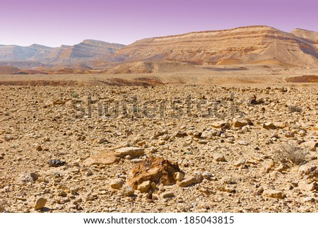 Stones of Grand Crater in Negev Desert, Israel - stock photo