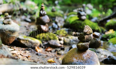Stones on shore of forest river