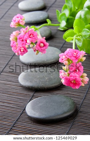 Stones path with flowers for zen spa background, vertical. selective focus on the first flower - stock photo