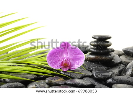 Stones tower with orchid and palm leaf on wet pebble