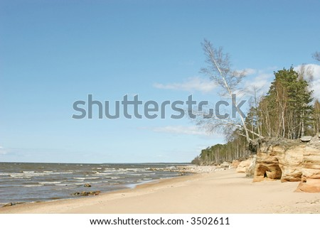 Stony beach view (Baltic sea coast, Latvia)