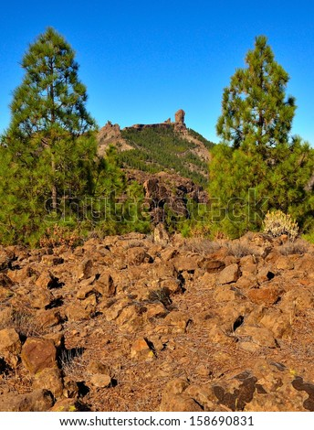 Stony ground with canarian pine trees in foreground and emblematic Roque Nublo with intense blue sky in background, Gran canaria, Canary islands - stock photo