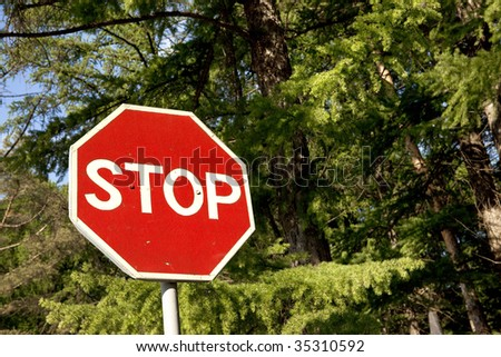 stop sign and green forest - stock photo