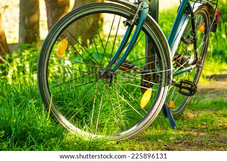 Stop the bike in the forest - stock photo