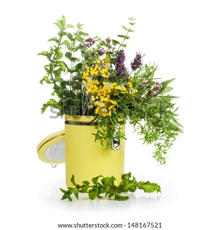 Storage container of blooming herbs on white background  - stock photo