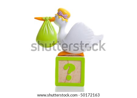 stork bringing baby with question mark boy or girl - stock photo