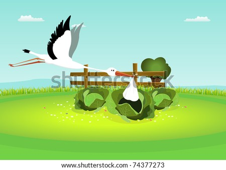 Stork Delivering Baby in Cabbage/ Illustration of a stork delivering a blanket, with baby inside, in a cabbage - stock photo