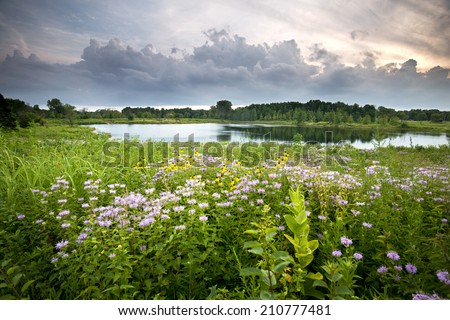 Storm clouds move along the horizon over White Pine Pond at Blackwell Forest Preserve, DuPage County, Illinois. - stock photo