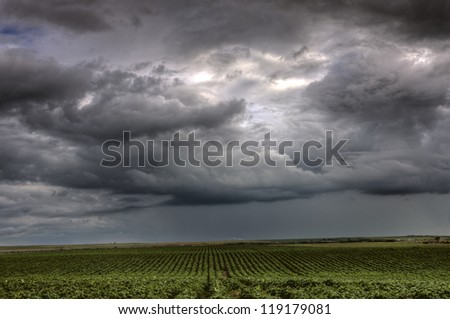 Storm Clouds Saskatchewan over rows of crops - stock photo
