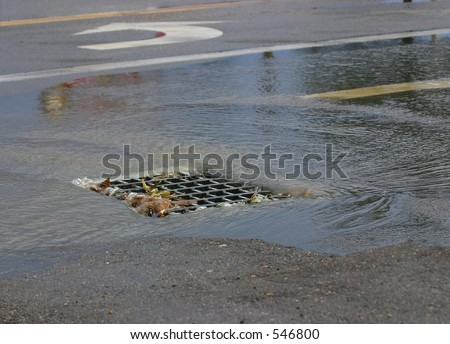 Storm Drain In Road - stock photo