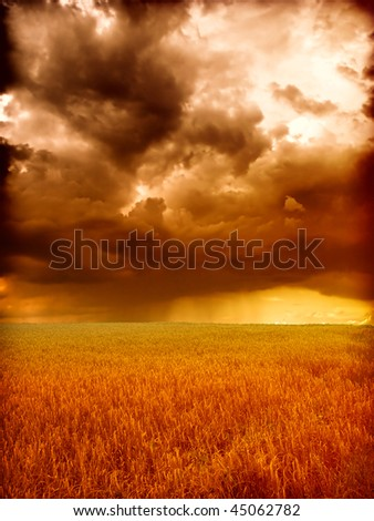 storm in wheat field - stock photo