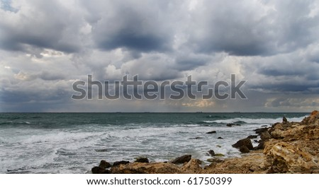 Storm on the coast. The gray sky and the waves rushing to shore